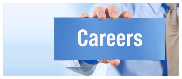 Career opportunity At DevRabbit